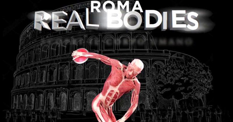 Real Bodies: a Roma la mostra scopri il corpo umano
